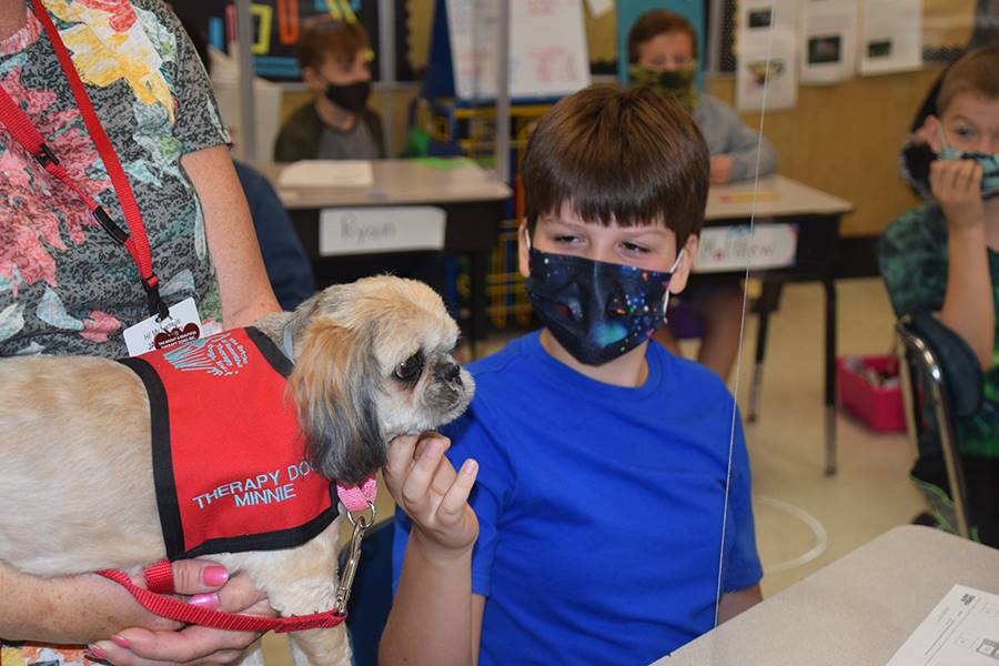 Therapy Dogs at TJW